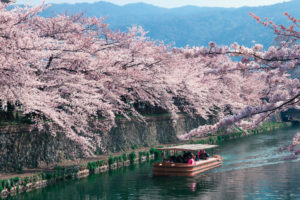 four-days-in-kyoto-an-authentic-japanese-experience