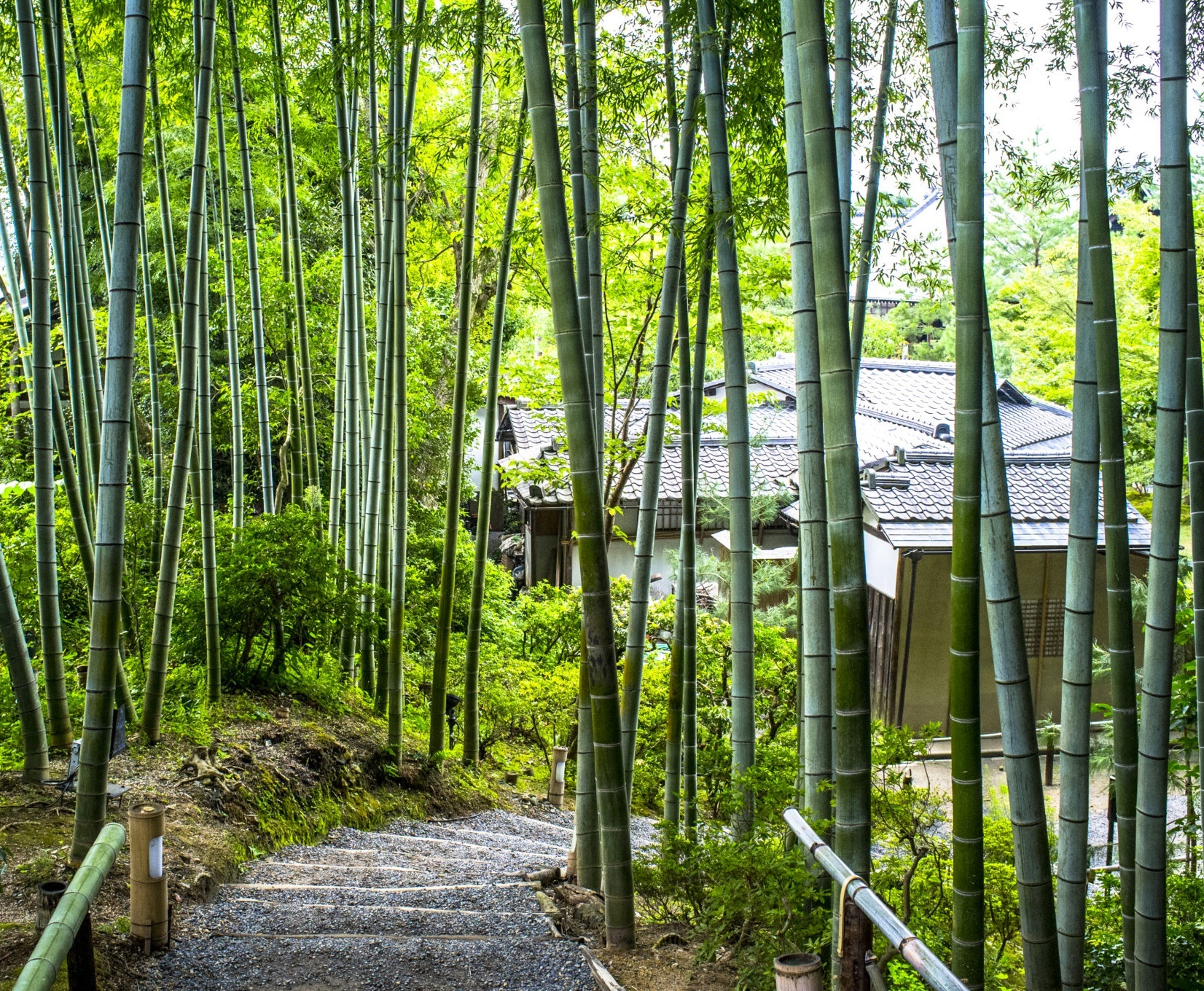 four-days-in-kyoto-an-authentic-japanese-experience7