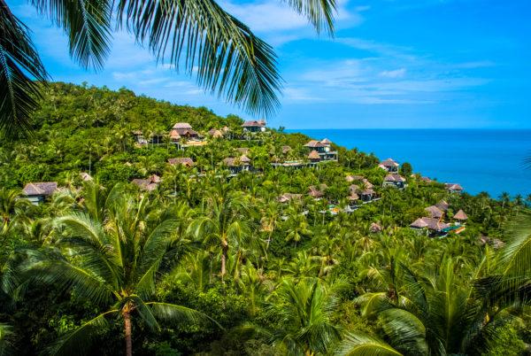 Four Seasons Koh Samui, seaview, villas, palm trees