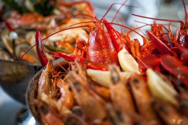 lobster, shrimps, seafood